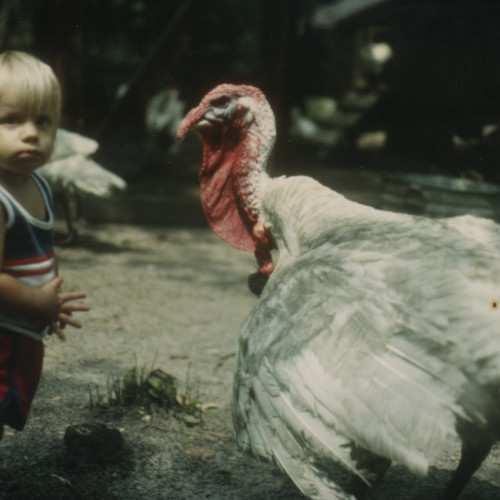 Ira Meets A Turkey