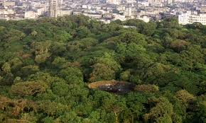 Parsi Tower of Silence, Mumbai